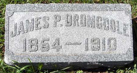 DROMGOOLE, JAMES P. - Scott County, Iowa | JAMES P. DROMGOOLE