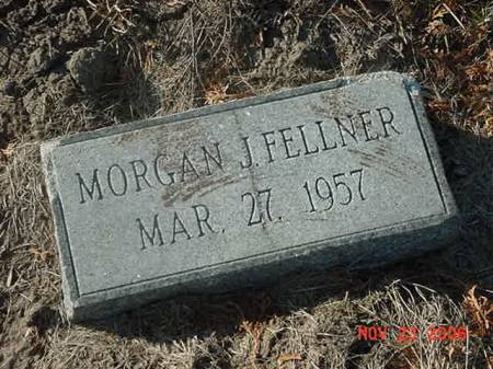 FELLNER, MORGAN J - Scott County, Iowa | MORGAN J FELLNER