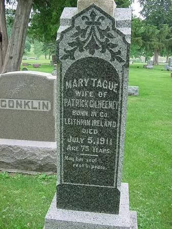 TAGUE GILHEENY, MARY - Scott County, Iowa | MARY TAGUE GILHEENY