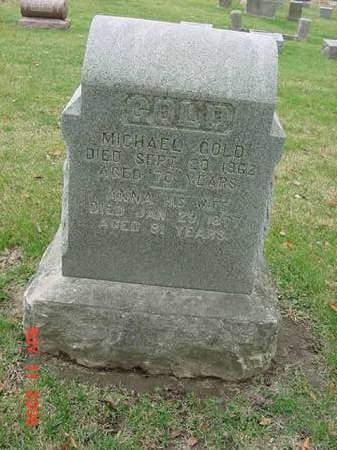 GOLD, MICHAEL - Scott County, Iowa | MICHAEL GOLD