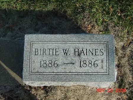 HAINES, BERTIE W - Scott County, Iowa | BERTIE W HAINES