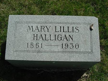 LILLIS HALLIGAN, MARY - Scott County, Iowa | MARY LILLIS HALLIGAN