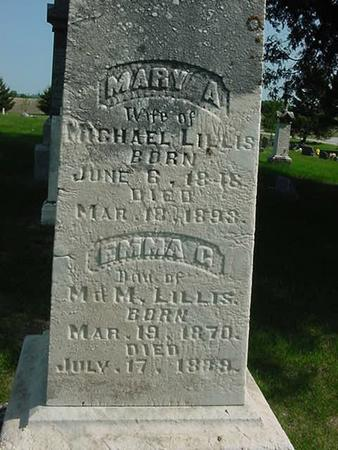 LILLIS, MARY A - Scott County, Iowa | MARY A LILLIS