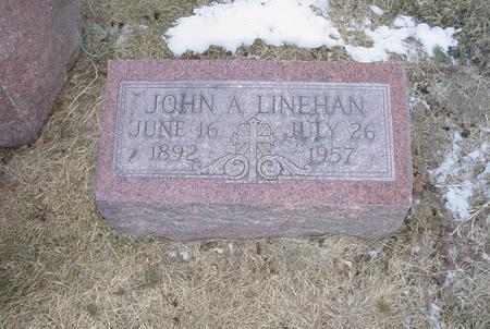 LINEHAN, JOHN ALOYSIUS - Scott County, Iowa | JOHN ALOYSIUS LINEHAN