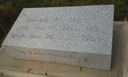 MALCHAU, JACOB - Scott County, Iowa | JACOB MALCHAU