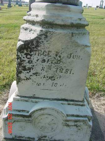 MARTIN, GEORGE W - Scott County, Iowa | GEORGE W MARTIN