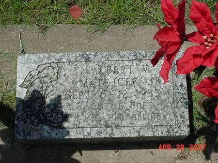 MATEJCEK, ALBERT V JR - Scott County, Iowa | ALBERT V JR MATEJCEK