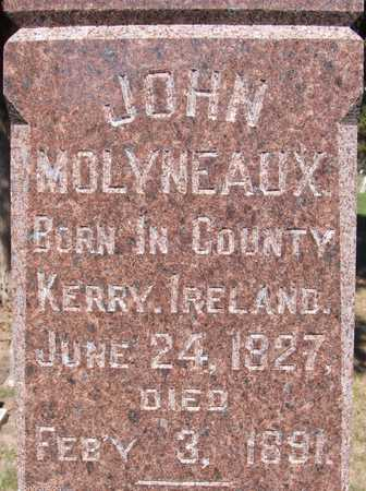 MOLYNEAUX, JOHN - Scott County, Iowa | JOHN MOLYNEAUX