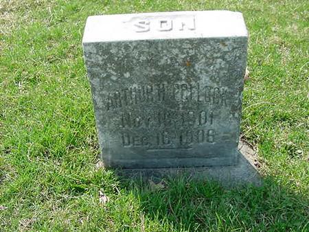 POLLOCK, ARTHUR H - Scott County, Iowa | ARTHUR H POLLOCK