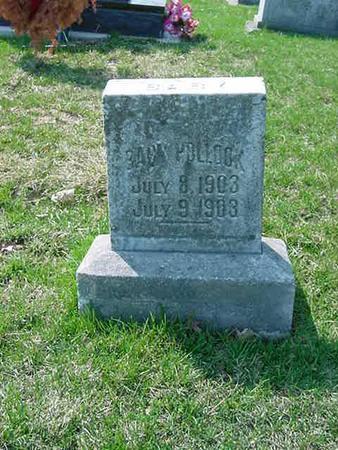 POLLOCK, BABY - Scott County, Iowa | BABY POLLOCK
