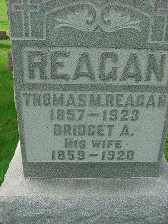 REAGAN, THOMAS A - Scott County, Iowa | THOMAS A REAGAN
