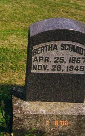 SCHMIDT, BERTHA - Scott County, Iowa   BERTHA SCHMIDT