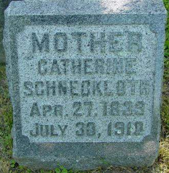 SCHNECKLOTH, CATHERINE - Scott County, Iowa | CATHERINE SCHNECKLOTH