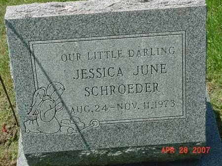 SCHROEDER, JESSICA JUNE - Scott County, Iowa | JESSICA JUNE SCHROEDER