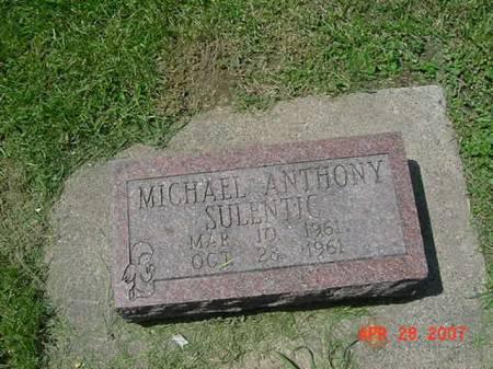 SULENTIC, MICHAEL ANTHONY - Scott County, Iowa | MICHAEL ANTHONY SULENTIC