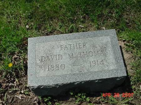 THOMAS, DAVID M - Scott County, Iowa | DAVID M THOMAS
