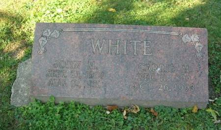 WHITE, JOHN M. - Scott County, Iowa | JOHN M. WHITE