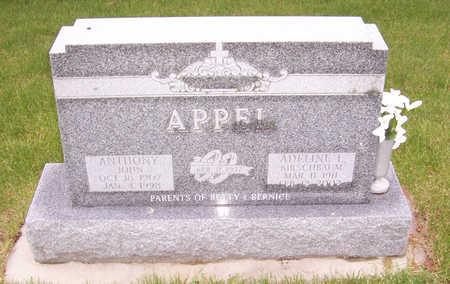 KIRSCHBAUM APPEL, ADELINE L. - Shelby County, Iowa | ADELINE L. KIRSCHBAUM APPEL