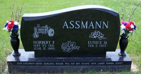 ASSMANN, EUNICE M. - Shelby County, Iowa | EUNICE M. ASSMANN