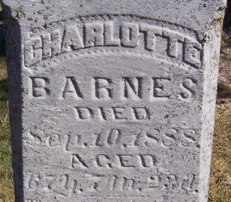 BARNES, CHARLOTTE (CLOSE-UP) - Shelby County, Iowa | CHARLOTTE (CLOSE-UP) BARNES