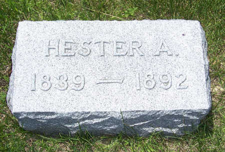 BUCKLEY, HESTER A. - Shelby County, Iowa | HESTER A. BUCKLEY