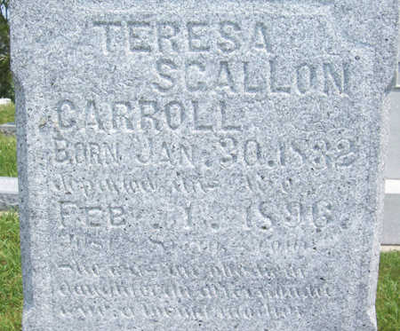 CARROLL, TERESA (UP CLOSE) - Shelby County, Iowa | TERESA (UP CLOSE) CARROLL
