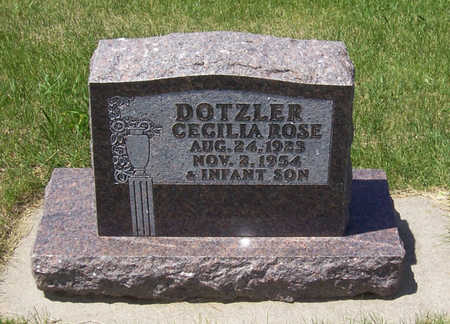 DOTZLER, INFANT SON - Shelby County, Iowa | INFANT SON DOTZLER
