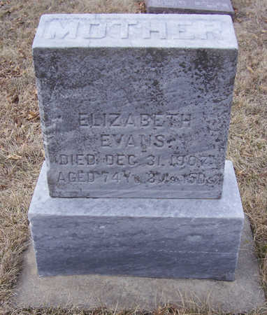 EVANS, ELIZABETH (MOTHER) - Shelby County, Iowa | ELIZABETH (MOTHER) EVANS
