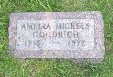 GOODRICH, AMELIA - Shelby County, Iowa | AMELIA GOODRICH