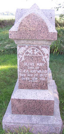 HAYWARD, OLIVE MAY - Shelby County, Iowa | OLIVE MAY HAYWARD