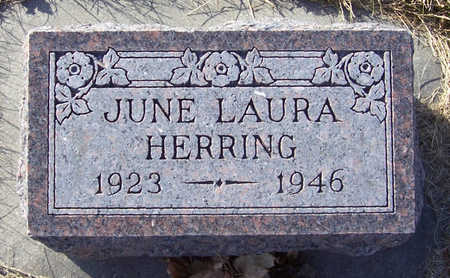 HERRING, JUNE LAURA - Shelby County, Iowa | JUNE LAURA HERRING