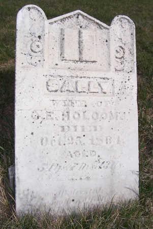 HOLCOMB, SALLY - Shelby County, Iowa | SALLY HOLCOMB