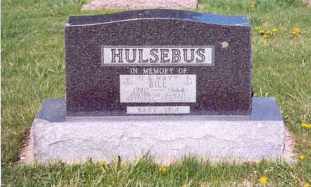 HULSEBUS, BILL - Shelby County, Iowa | BILL HULSEBUS