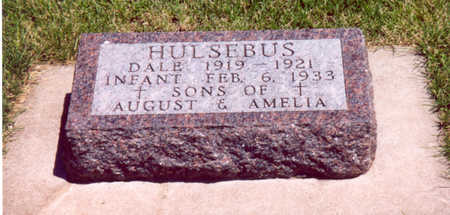 HULSEBUS, DALE & INFANT - Shelby County, Iowa | DALE & INFANT HULSEBUS