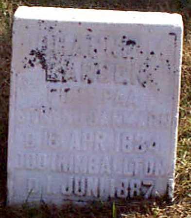JENSEN, JOHANNE M - Shelby County, Iowa | JOHANNE M JENSEN