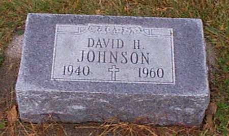 JOHNSON, DAVID H - Shelby County, Iowa | DAVID H JOHNSON