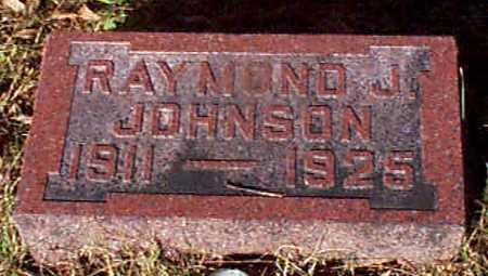 JOHNSON, RAYMOND J - Shelby County, Iowa | RAYMOND J JOHNSON