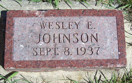 JOHNSON, WESLEY E. - Shelby County, Iowa   WESLEY E. JOHNSON