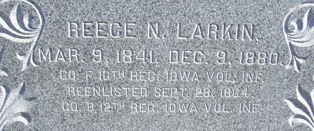 LARKIN, REECE N. (CLOSE-UP) - Shelby County, Iowa | REECE N. (CLOSE-UP) LARKIN