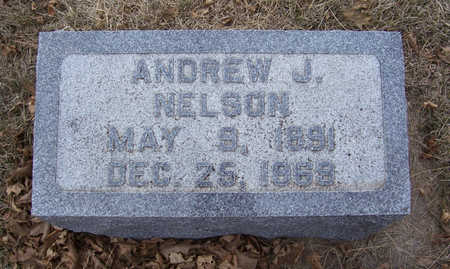 NELSON, ANDREW J. - Shelby County, Iowa | ANDREW J. NELSON