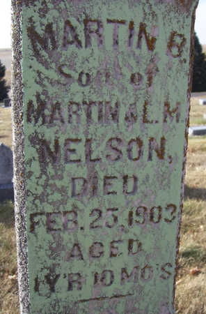 NELSON, MARTIN B. (CLOSE-UP) - Shelby County, Iowa | MARTIN B. (CLOSE-UP) NELSON