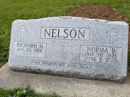NELSON, RICHARD H - Shelby County, Iowa | RICHARD H NELSON