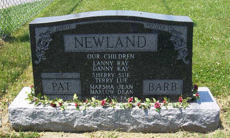 NEWLAND, PAT (DADDY) - Shelby County, Iowa | PAT (DADDY) NEWLAND