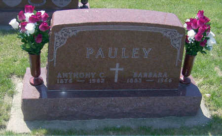 PAULEY, ANTHONY C. - Shelby County, Iowa | ANTHONY C. PAULEY