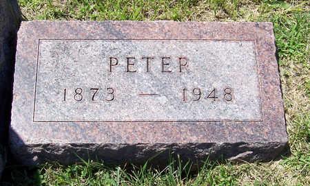 PAULEY, PETER - Shelby County, Iowa | PETER PAULEY