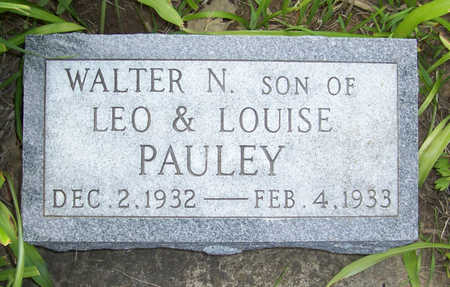 PAULEY, WALTER N. - Shelby County, Iowa | WALTER N. PAULEY