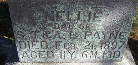 PAYNE, NELLIE (CLOSE-UP) - Shelby County, Iowa | NELLIE (CLOSE-UP) PAYNE