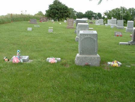 RAY, FAMILY PLOT - Shelby County, Iowa | FAMILY PLOT RAY