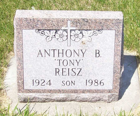 REISZ, ANTHONY B. - Shelby County, Iowa | ANTHONY B. REISZ