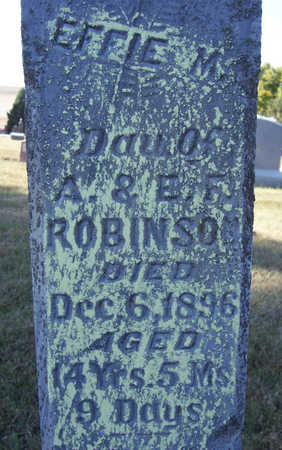 ROBINSON, EFFIE M. (CLOSE-UP) - Shelby County, Iowa | EFFIE M. (CLOSE-UP) ROBINSON